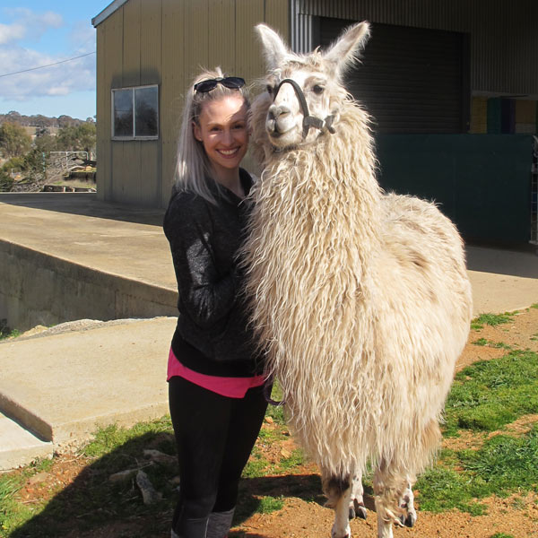 A smiling lady and a happy white llama standing next to each other