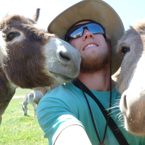 A selfies with donkeys!