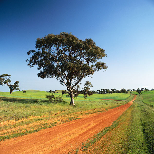 Australian farm dirt road with farms in the distance